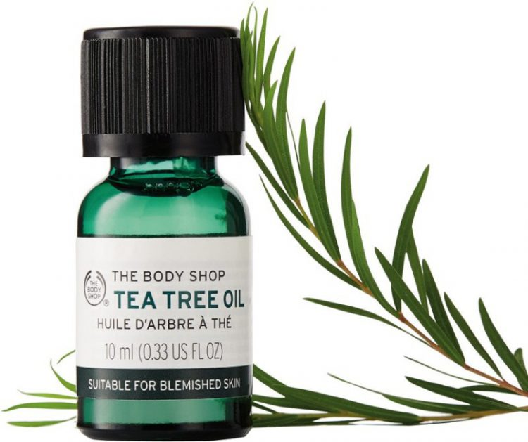 Tea tree oil for treating oily scalp and acne skin